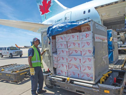 trade-war-adds-canadian-flavour-into-chinese-cuisine-supply-chain
