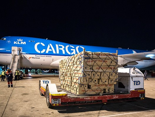 AFKLMP Cargo transports 3,000 tonnes of flowers to Europe using Boeing 747-400F