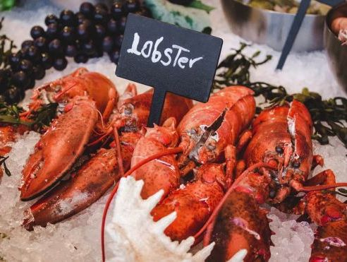 Lobster air freight volumes rise at Auckland Airport