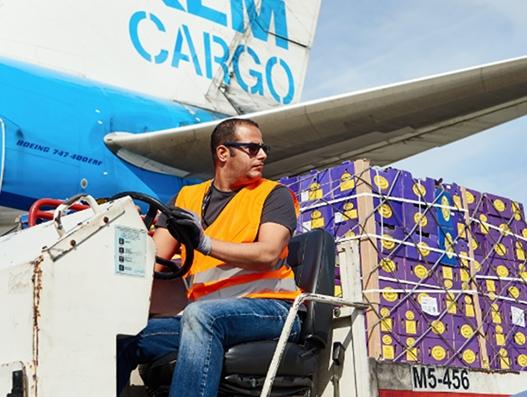 Schiphol links critical flower shipment data to Air Waybills