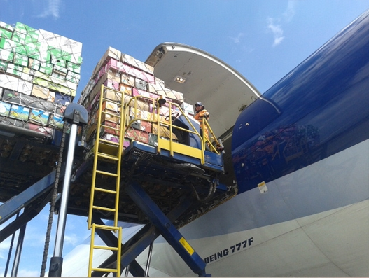 LATAM Cargo transports over 9,000 tonnes of flowers for Valentine's Day