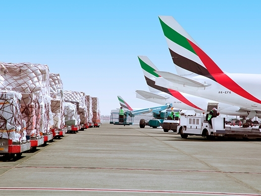 Emirates SkyCargo targets salmon exports with new Chile service
