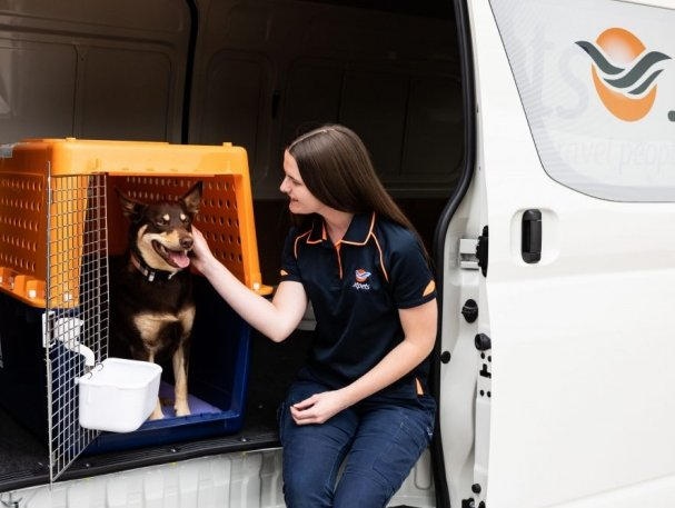 IATA certifies Australia's Jetpets with CEIV for live animals