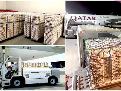 Qatar Cargo delivers historic shipment of day-old breeding stock chicks