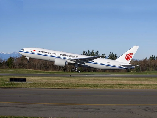 Air China Cargo is the first mainland Chinese carrier to ban the transport of shark fins
