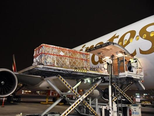 Emirates SkyCargo transports 2,000-yr old Buddha statue to Zurich