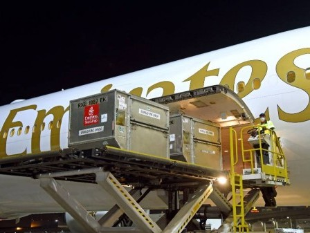 Emirates SkyCargo transports first batch of Pfizer-BioNTech Covid-19 vaccines