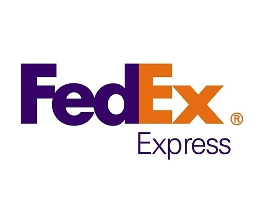 FedEx launches cross-border e-commerce export solution in South China