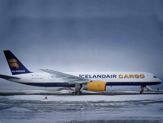 FedEx to boost Iceland operations from 2020, inks deal with Icelandair Cargo