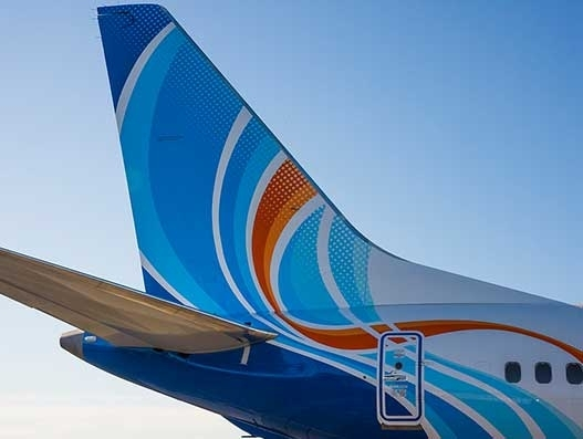 flydubai Cargo launches service to transport live animals