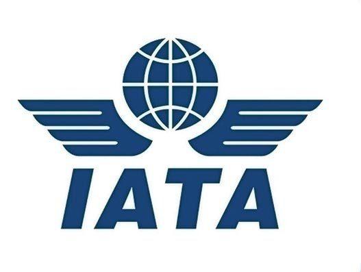 IATA posts 1.1% decline in November air freight demand, says pressure is easing