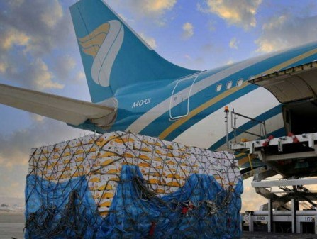 Air cargo demand climbs 9% in February; volumes return to 2018 levels: IATA