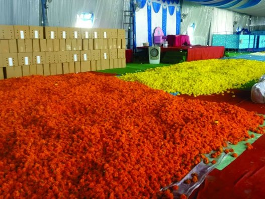 41,444 kgs of marigolds sent from Bengaluru airport to Dubai make Guinness record