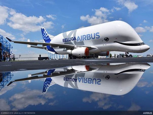 Airbus unveils first BelugaXL cargo jet in whale themed livery