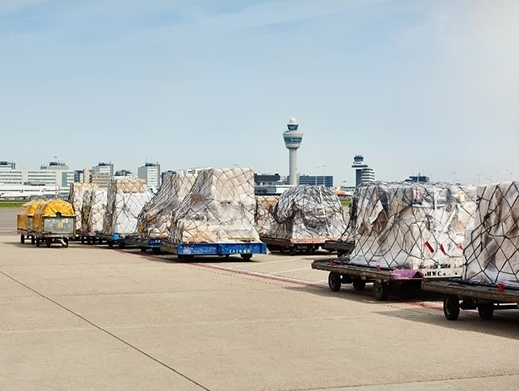 Amsterdam Airport Schiphol sees dip in H1 cargo volumes