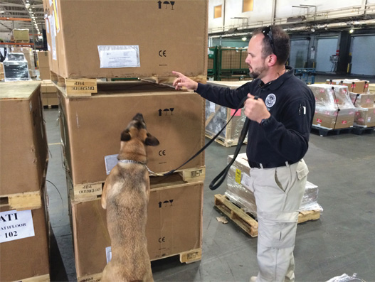 Keeping a watchful eye on air cargo security