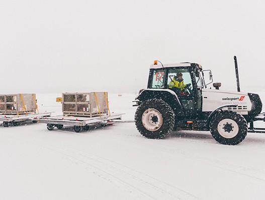 Swissport handles arrival of two Chinese Pandas at Helsinki-Vantaa airport