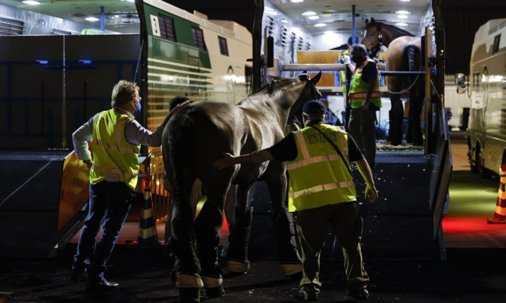 Equine champions fly to Liege Airport on Emirates SkyCargo