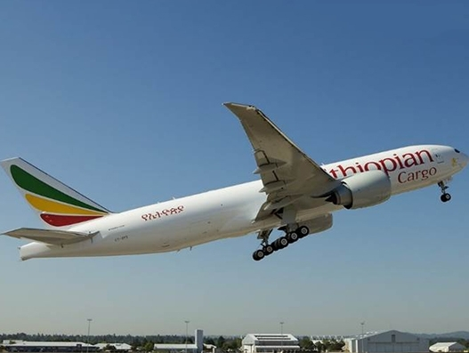 Ethiopian Airlines adds Miami to its freighter network