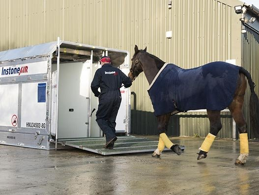 InstoneAir, LG Bloodstock fly competitors to Saudi Arabia for the world's richest horse race