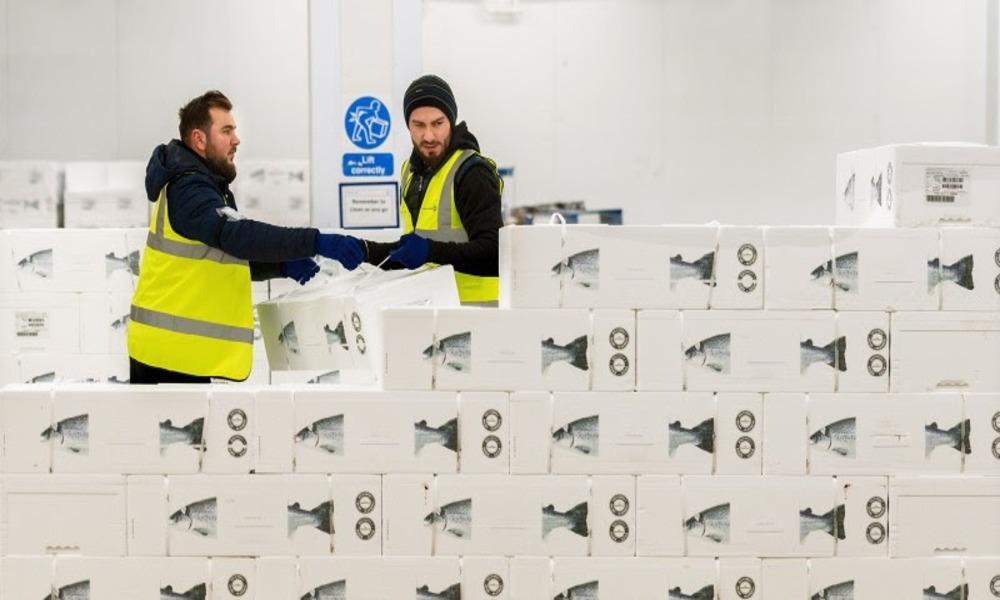 Kuehne Nagel acquires Salmosped; expands perishable network