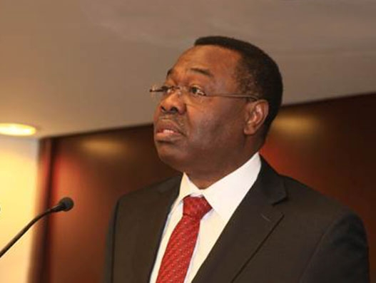 Lomé Declaration implementation will drive Africa's air cargo growth:  ICAO Council President