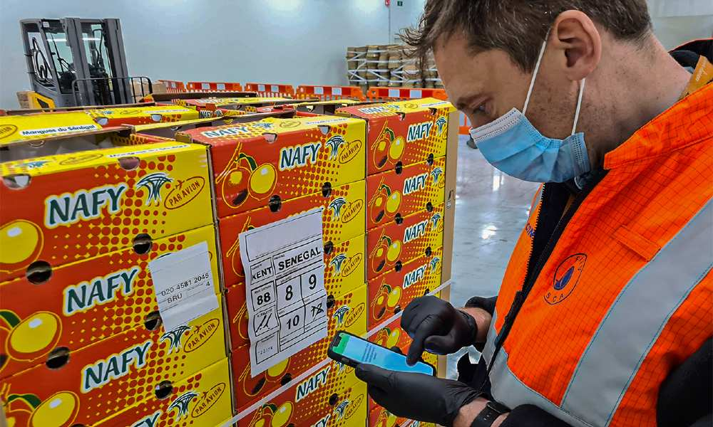 Brussels Airport opens two new border inspection posts for perishables goods
