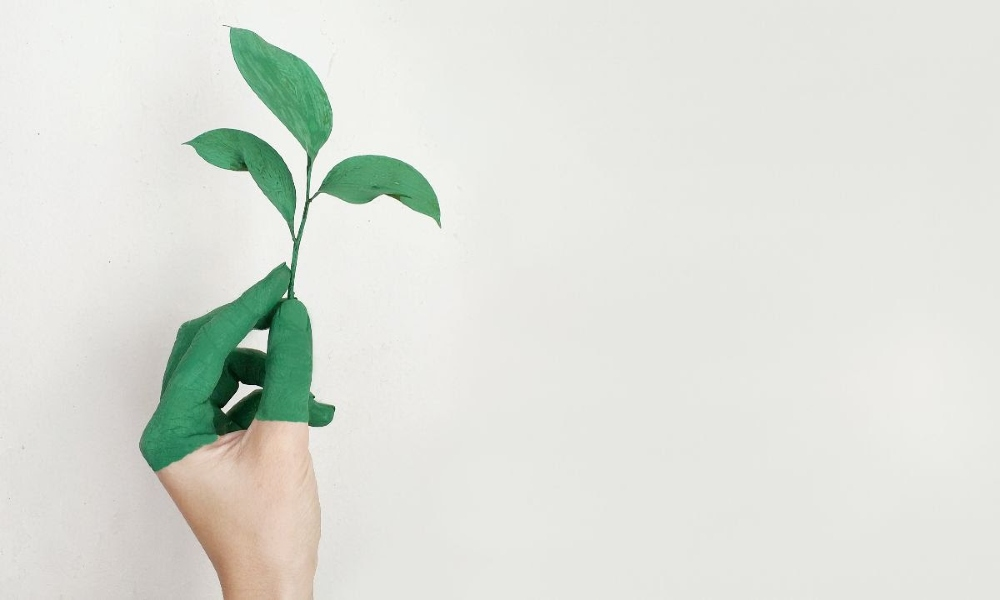 SkyCell announces sustainability report, commit for greener pharma supply chain