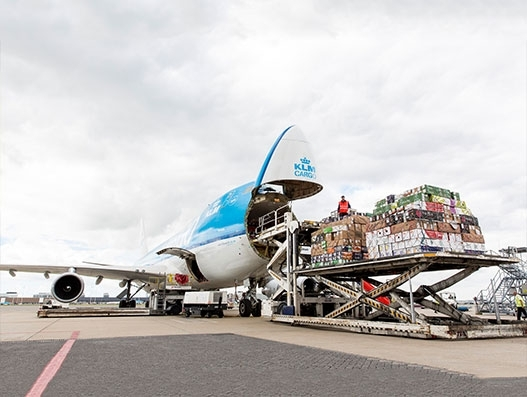 AFKLMP Cargo transports about 3,300 tonnes of flowers to Europe