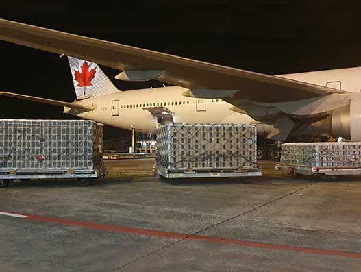 Air Canada Cargo kept pollination uninterrupted in Canada