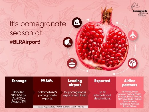 Kempegowda International Airport, Bengaluru (KIAB/ BLR Airport) processed 180,745 kg of pomegranates from April to August 2020, making it India's leading airport for pomegranate exports.