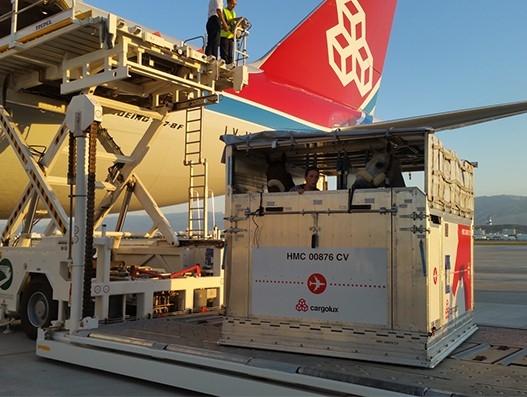 Cargolux in horse transportation to Ashgabat for Asian Games