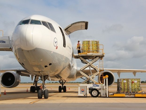To facilitate the processing of large volumes of data solicited from consolidation of a cargo, and enable a seamless access of the cargo to and from international airport 'gates', airports are keen on adopting a system of digital airfreight corridor.