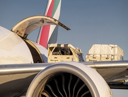 Emirates' cargo division flies 67 horses for World Equestrian Games