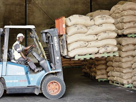 Bolloré Transport & Logistics Ivory Coast gets busy with cocoa exports