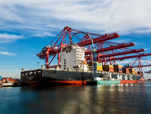 Cargo container trade expected to grow in 2017