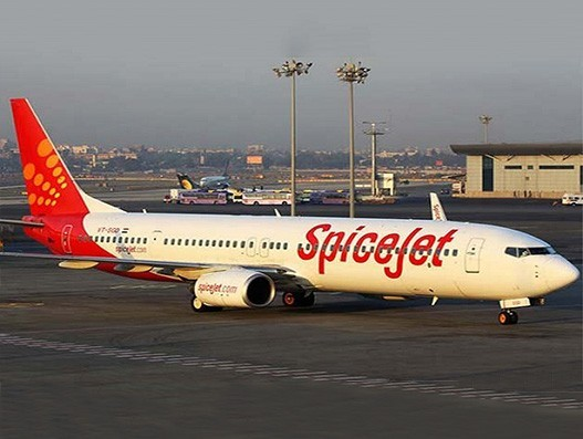 SpiceJet transports 175 tonnes of lychee and fish seeds in May