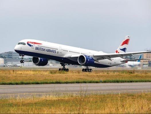 Temporary suspension of dog travel on British Airways flights
