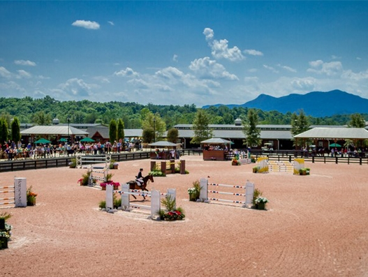 Horses for World Equestrian Games most likely to land at Greenville-Spartanburg Airport