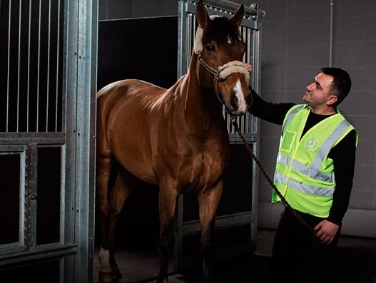 Turkish Cargo joins Animal Transportation Association
