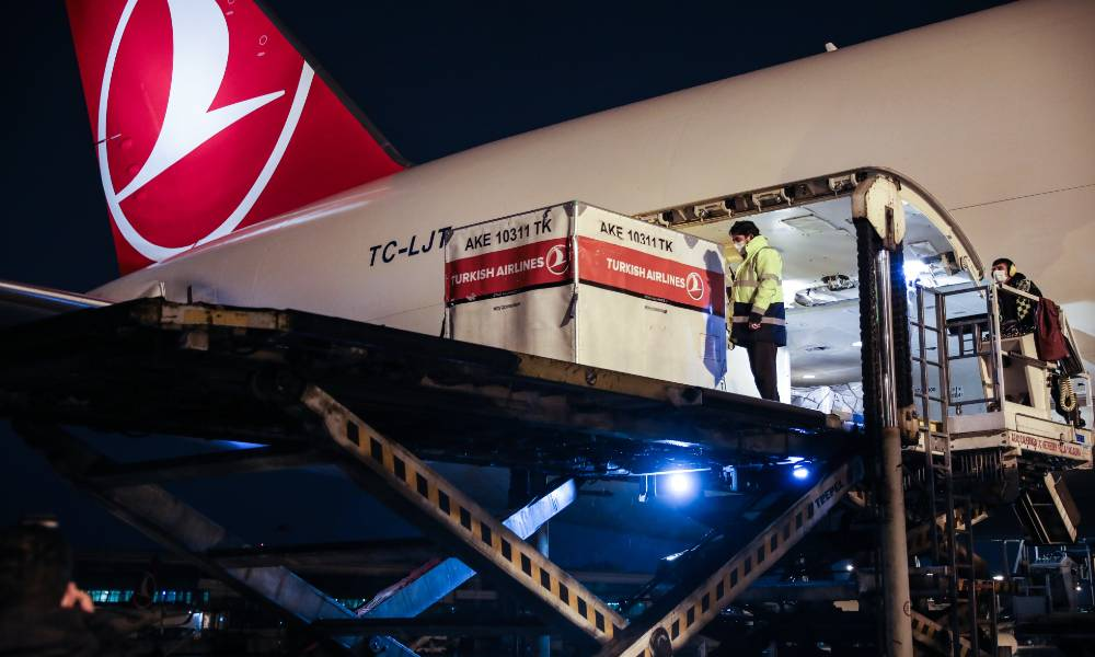 Turkish Cargo transports 1700-year-old Cybele statue back to Turkey