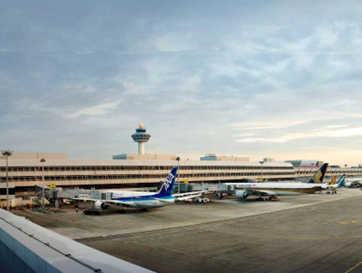 Singapore Changi Airport sees steady cargo growth in June this year