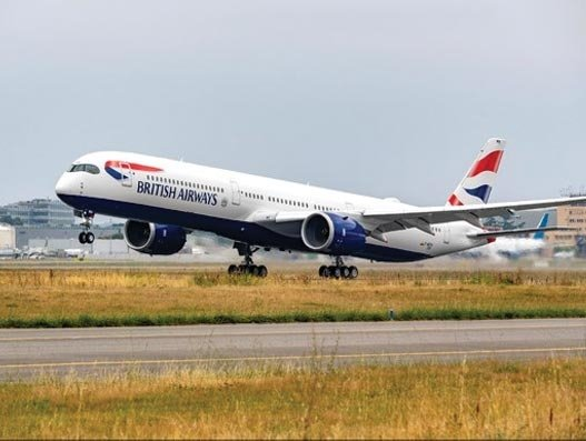 Temporary suspension of dog travel on British Airways flights