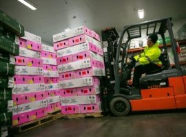 DFW Airport preps up to counter Valentine's Day cargo rush