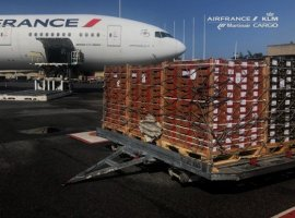 SIIM, Europe's leading producer and exporter of West African mangoes, and Air France KLM Martinair Cargo joined forces in transporting 400 tonnes of mangoes from Abidjan to Paris