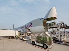 When Covid-19 struck the entire global supply chain, it was air cargo that stepped in fulfil the demand created by panic buying and lockdowns.