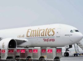 Emirates' cargo division reported a revenue of AED 11.2 billion (US$ 3.1 billion), a decrease of 14 percent over last year.