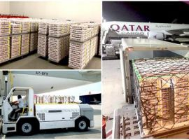 Qatar Airways Cargo utilised its flight traveling from Doha, Qatar to Hong Kong to make a stop in Bangladesh and delivered the 168,760 day-old breeding stock chicks.
