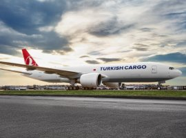 Turkish Cargo became the first air cargo airline to concurrently achieve all three CEIV Pharma, CEIV Fresh, and CEIV Live Animals certifications