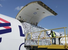 LATAM Cargo flew 12,600 tonnes of fresh flowers from Latin America this Valentine's season